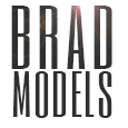 Brad Models
